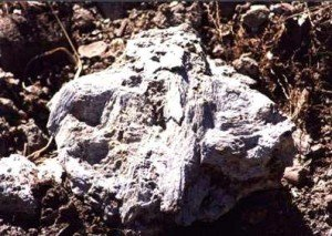 tremolite-300x213